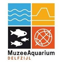 Muzeeaquarium